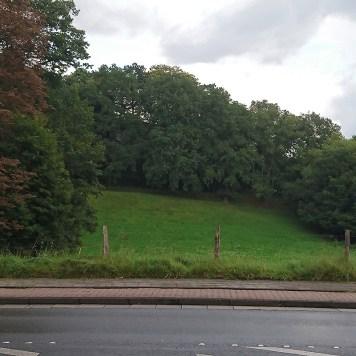 Und das, liebe Kinder, ist die Butterwiese, das war früher unser Rodelberg... (Aktuelle Aussicht vom Augenarztparkplatz aus.)