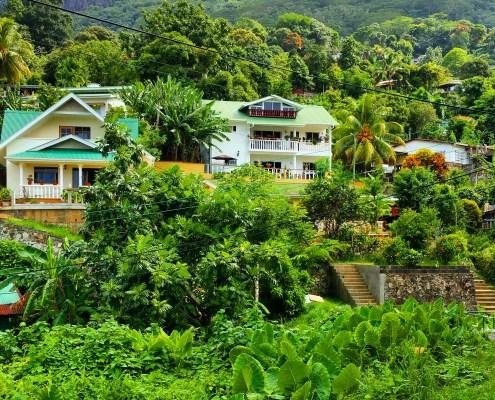 Wunderschöne, grüne Wälder, Hügel und mittendrin total charmante Häuser, von denen viele auch Guesthouses sind, in denen du Urlaub machen kannst.