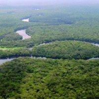 Changement climatique : Brazzaville parmi les bénéficiaires d'un fonds français