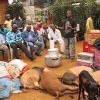 Congo Brazzaville: le mariage traditionnel, escroquerie ou exhibition de la puissance financière?