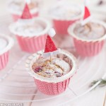 Cranberry Muffins with Orange and Pistachios