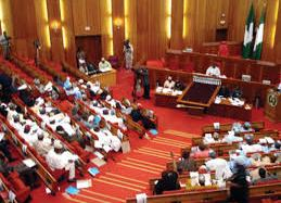 Rising Tempers Halt Debate On State Of The Nation Bill