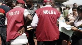 Drug Trafficking Cartel Smashed in Enugu Airport