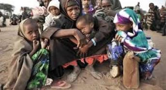 400,000 Persons Displaced By Boko Haram In 2014 – NEMA