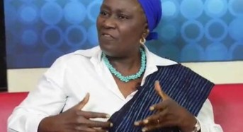 I Want To Fix Nigeria- Remi Sonaiya, Only Female Presidential Candidate