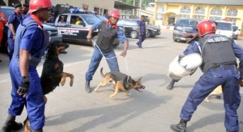 Civil Defence Corps Arraign Eight Pipeline Vandals in Kaduna