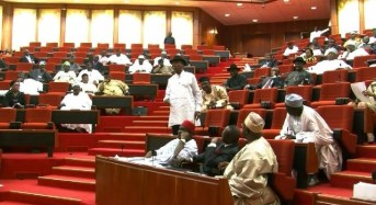 Senate Approves Nominee For Auditor General Of The Federation