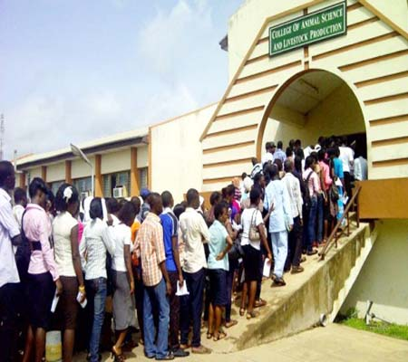 UTME students about to write exam at a centre… What hope of placement for them?