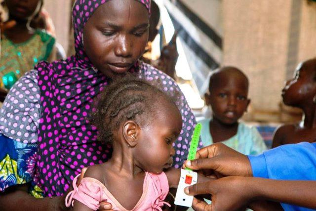 looming-humanitarian-crisis-in-northeast-may-be-worse-than-insurgency-msf-warns