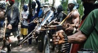 FG Blames Niger Delta Militants For Recession