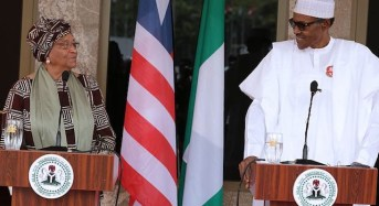 Buhari Reiterates Need For Political Stability In Africa