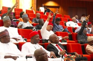 senate-insists-on-magus-rejection