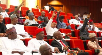 Senate Condemns Poor Funding of Anti-Corruption Agencies