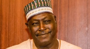 Senate/Executive Row Deepens As SGF Refuses To Honour Invitation