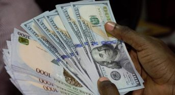 Can More Dollar Supply Stabilise the Naira?