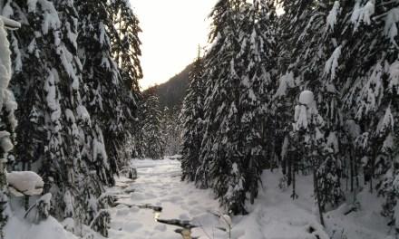 Franklin Falls, à découvrir cet hiver