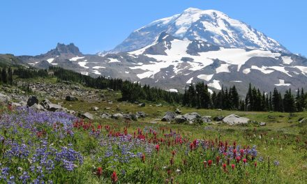 Spray Park: a nice Hike on Mount Rainier