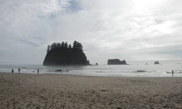 Discovering the Olympic Peninsula