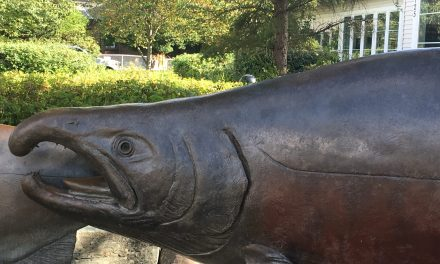 The Salmon, symbol of the Pacific Northwest
