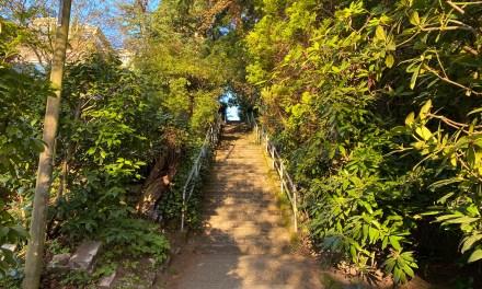 Prenez les escaliers et découvrez Seattle