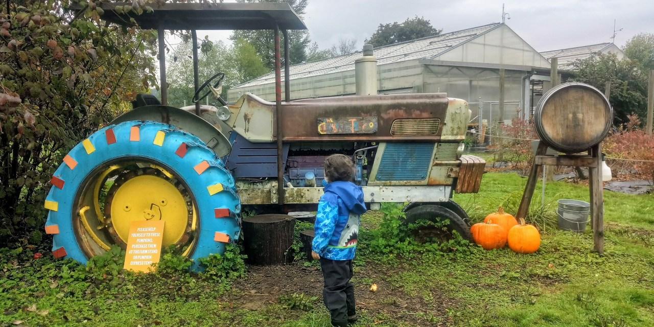 Célébrez l'automne à la ferme!