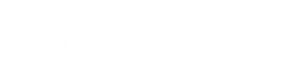 icity.brussels logo