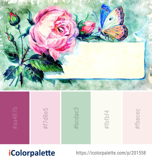 Color Palette Ideas from Flower Flowering Plant Butterfly Image ...
