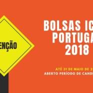 BOLSAS ICOM Portugal 2019