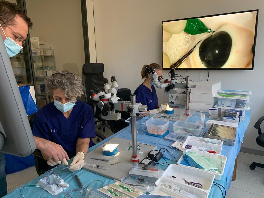 ASCO 2020 – percorso di chirurgia della vitreo-retina