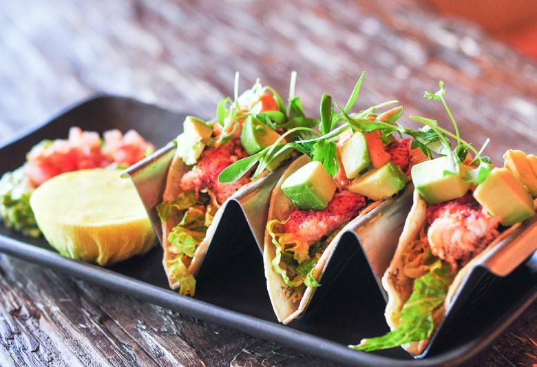 Rancho Valencia LOBSTER TACOS