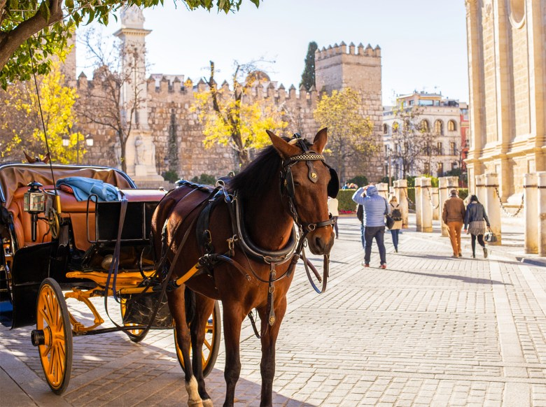 Seville Spain - City By Horse and Carriage