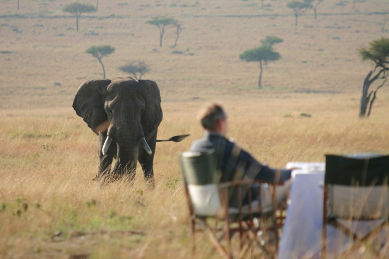 Dining with an East African Elephant - Abercrombie & Kent