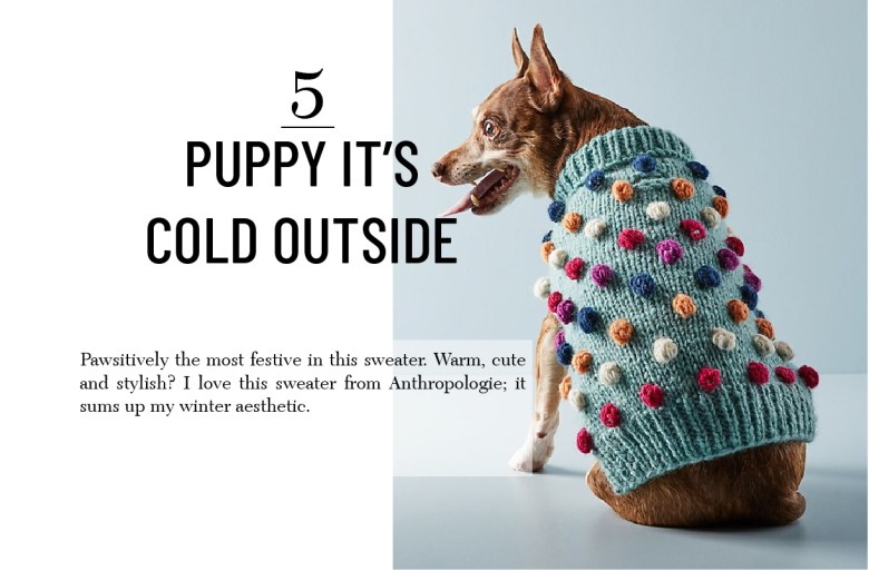 Pom sweater Christmas gift for pets