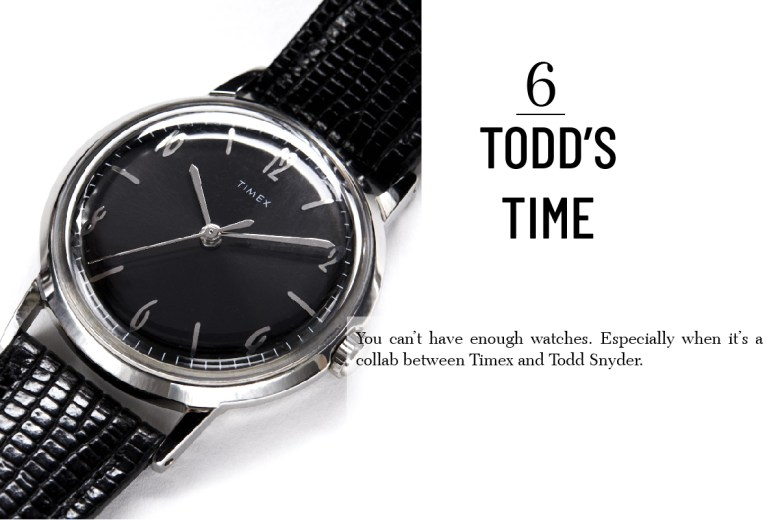 Timex and Todd Snyder watch for men