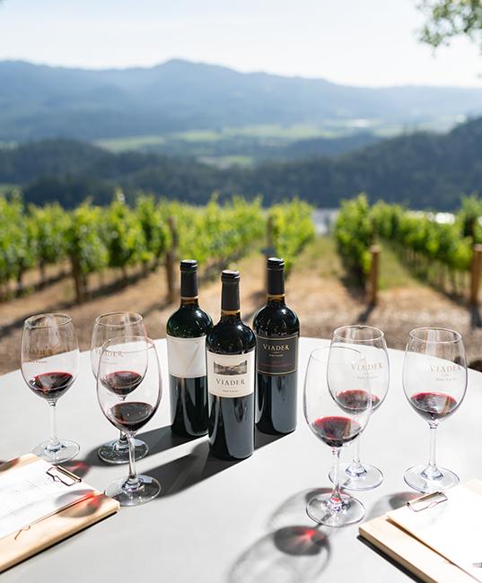 Viader Winery Napa Valley Cabernet Sauvignon