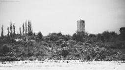 Landscape - February 2014