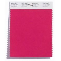 .Pink yarrow 17-2034 rosa festivo das maquiagem femeninas
