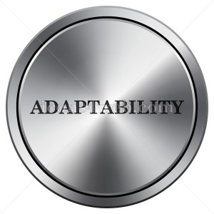 Adaptability icon. Round icon imitating metal. - Buy Icons for your website