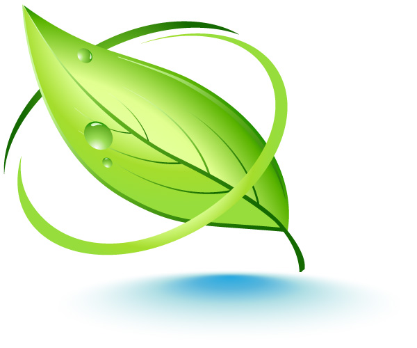 Natural Leaf Vector Graphic