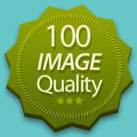 Image Quality