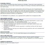 Plumber CV Example