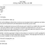 Follow Up Letter Example After Unsuccessful Interview