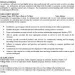 Sales Advisor CV Example