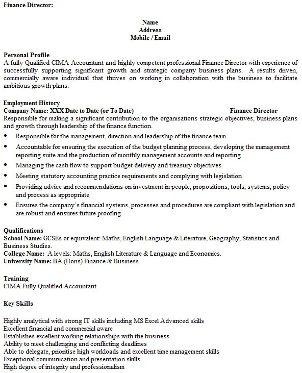 finance director cv example