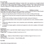Healthcare Assistant CV Example