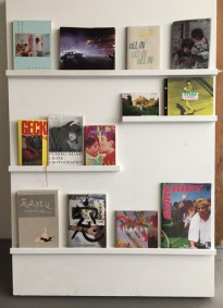Books on view at Little Big Man Gallery