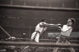 sport38boxing-1960-summer-olympics-usa-cassius-clay-in-action-during-light-picture-id81357854