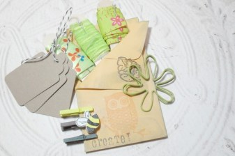 Green Embellish Pack - 3 Yards of Ribbon Kraft Tags Bakers Twine Spiral Clips Mini Clothes Pin Set