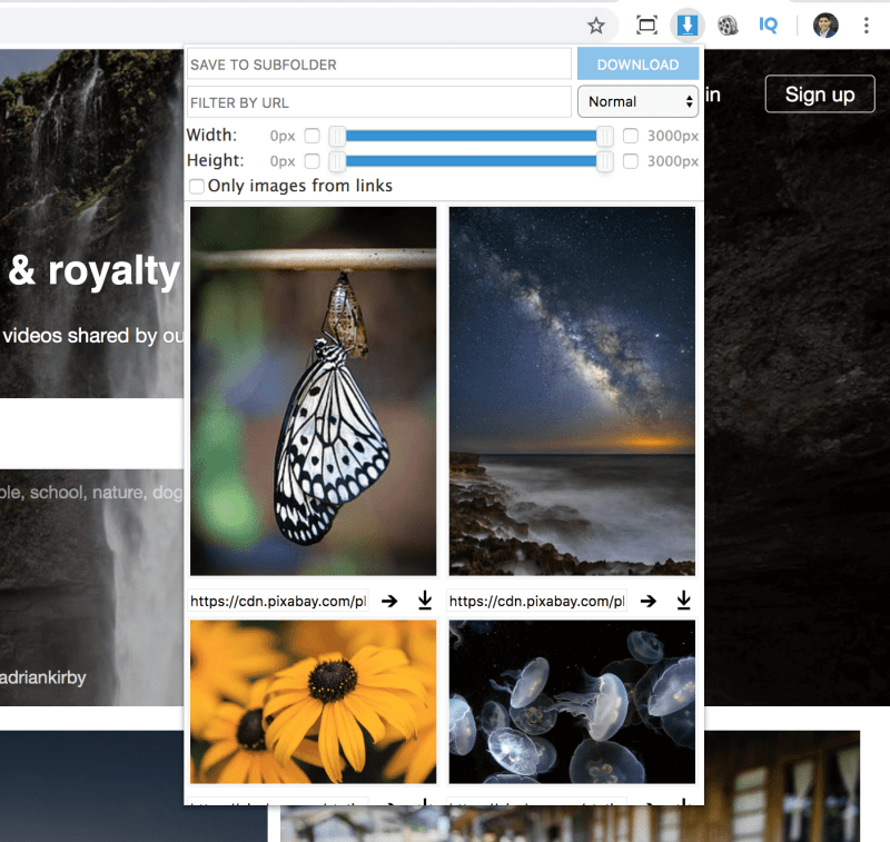 download all the images from a website at once