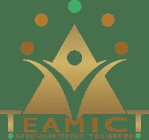 Logo TeamicT